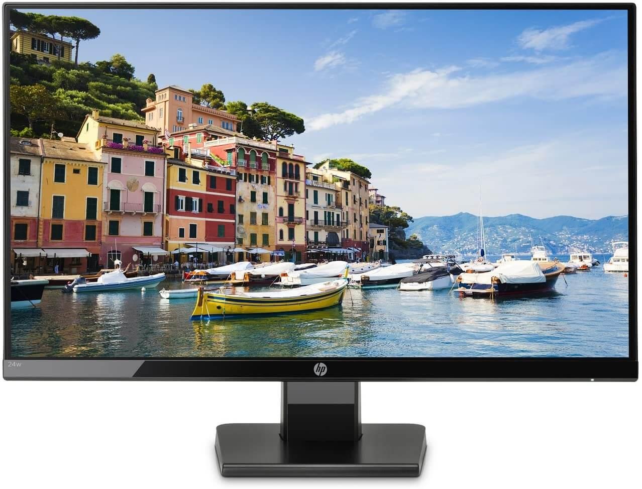 HP 24w Ecran PC Full HD Noir Onyx